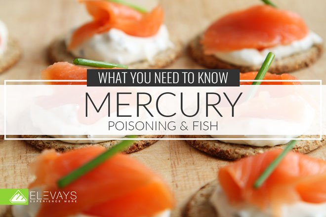 Mercury Poisoning Fish