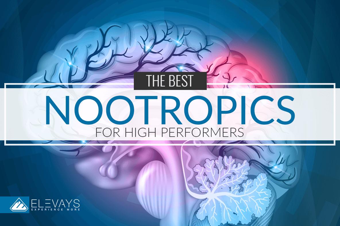 The Best Nootropics for High Performers