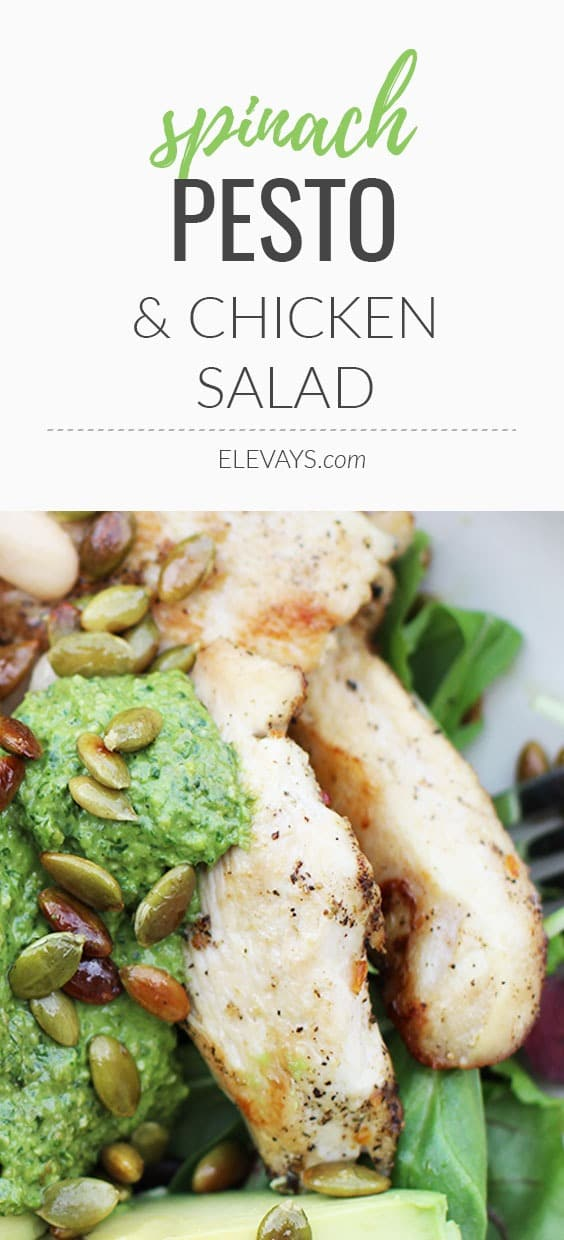 A healthy, easy and quick dinner or lunch recipe, this spinach pesto and chicken salad is as good for healthy skin as it is for your whole body! | www.elevays.com