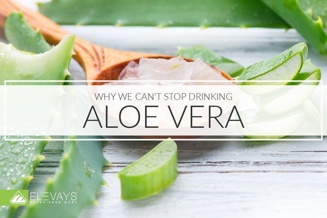 Aloe vera juice is here to help you with all your problems. Constipation? Yes. Sluggish liver? Yes. Immunity? Yup. Weight loss? You bet. Aging? Oh yeah! Find out all the benefits of a daily aloe vera drink. #aloevera #naturalremedies #healthyrecipes